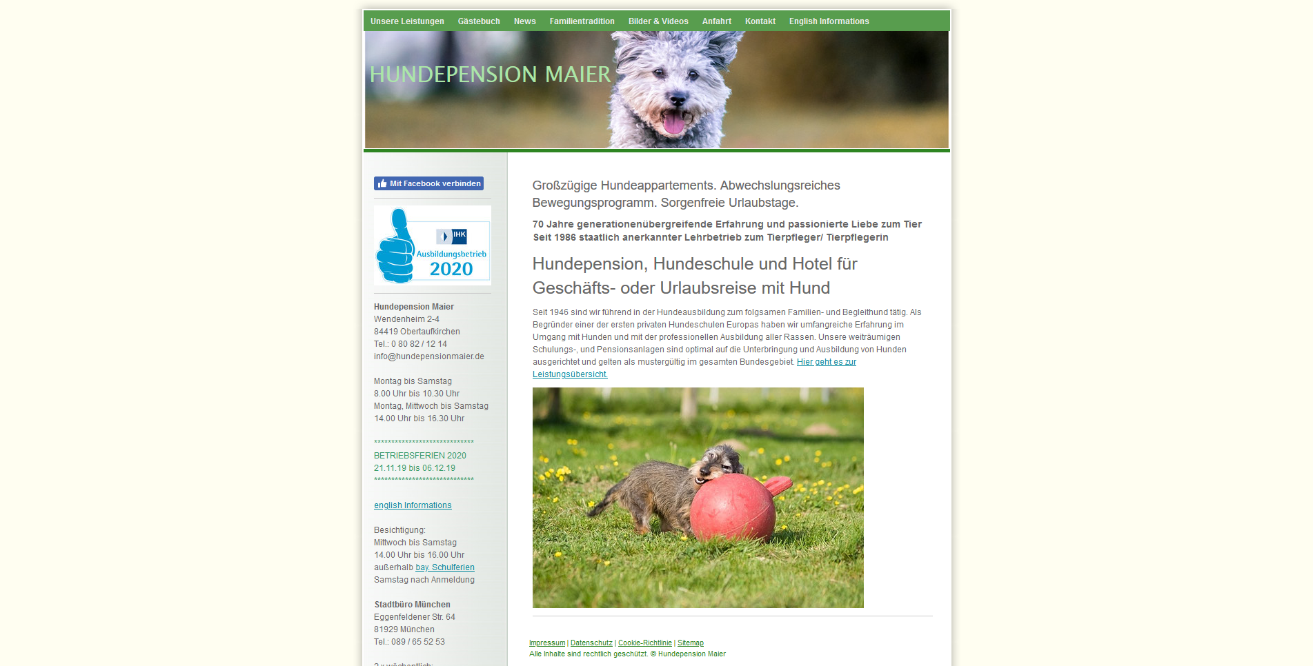 Hundepension Maier