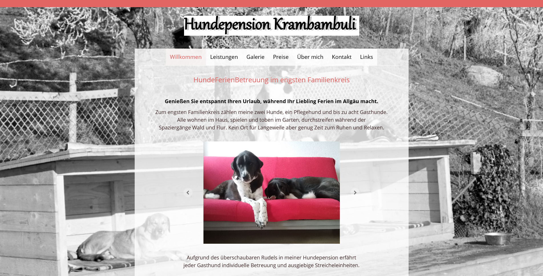 Hundepension Krambambuli