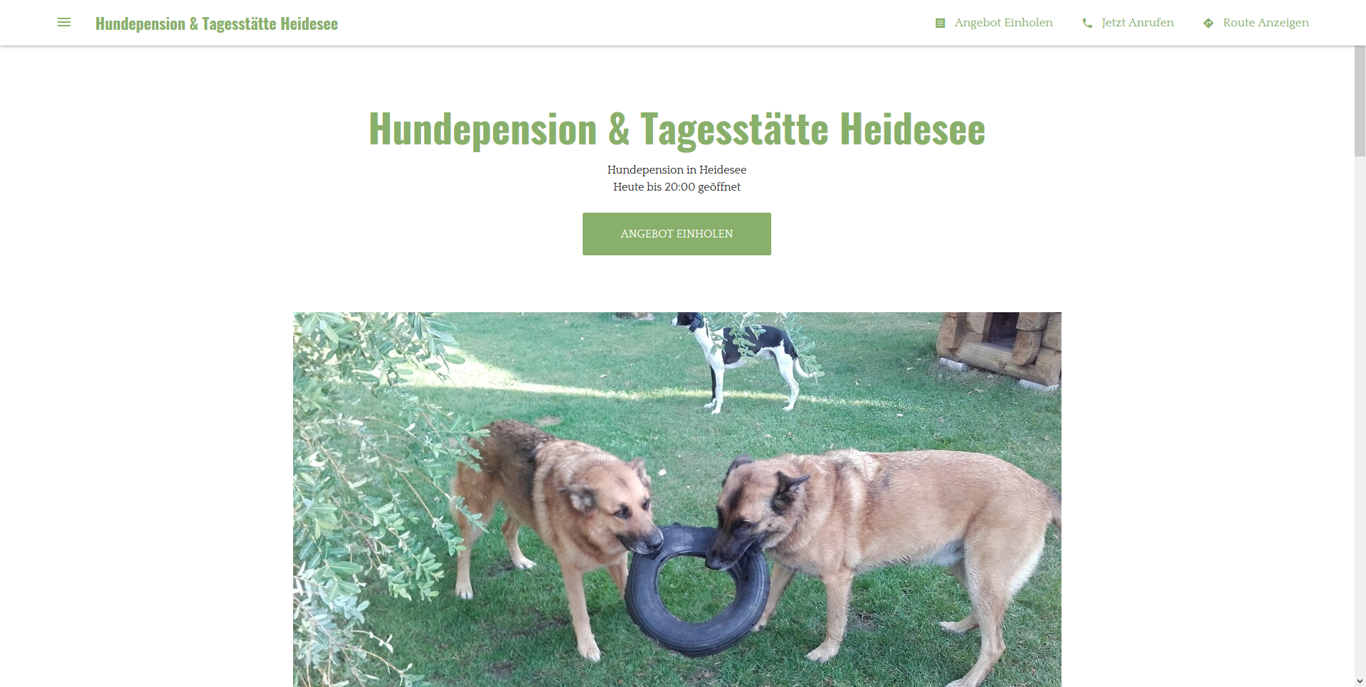 Hundepension & Tagesstätte Heidesee