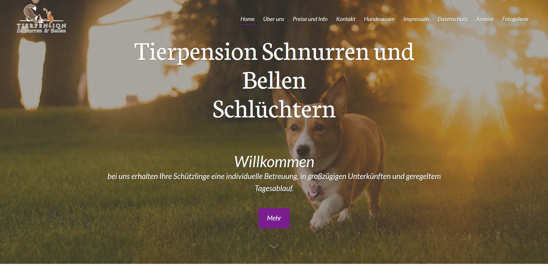 Hundepension Link