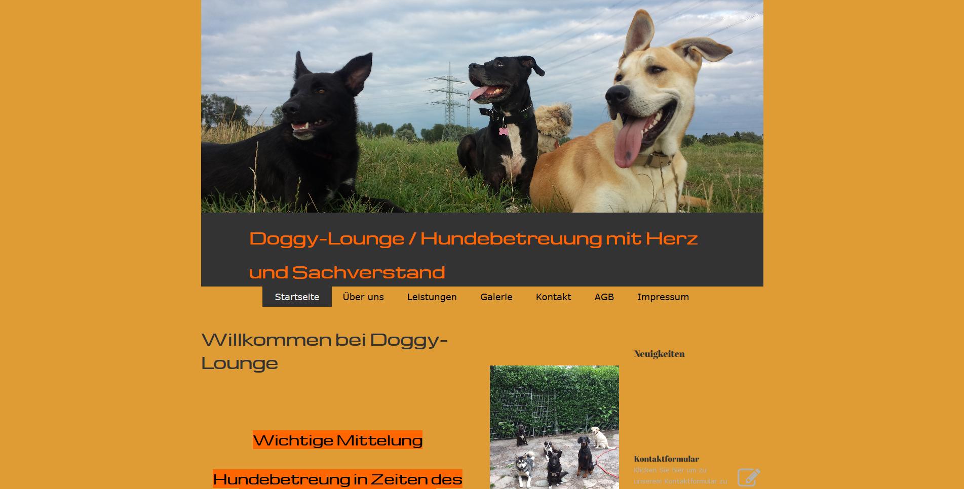 Doggy Lounge