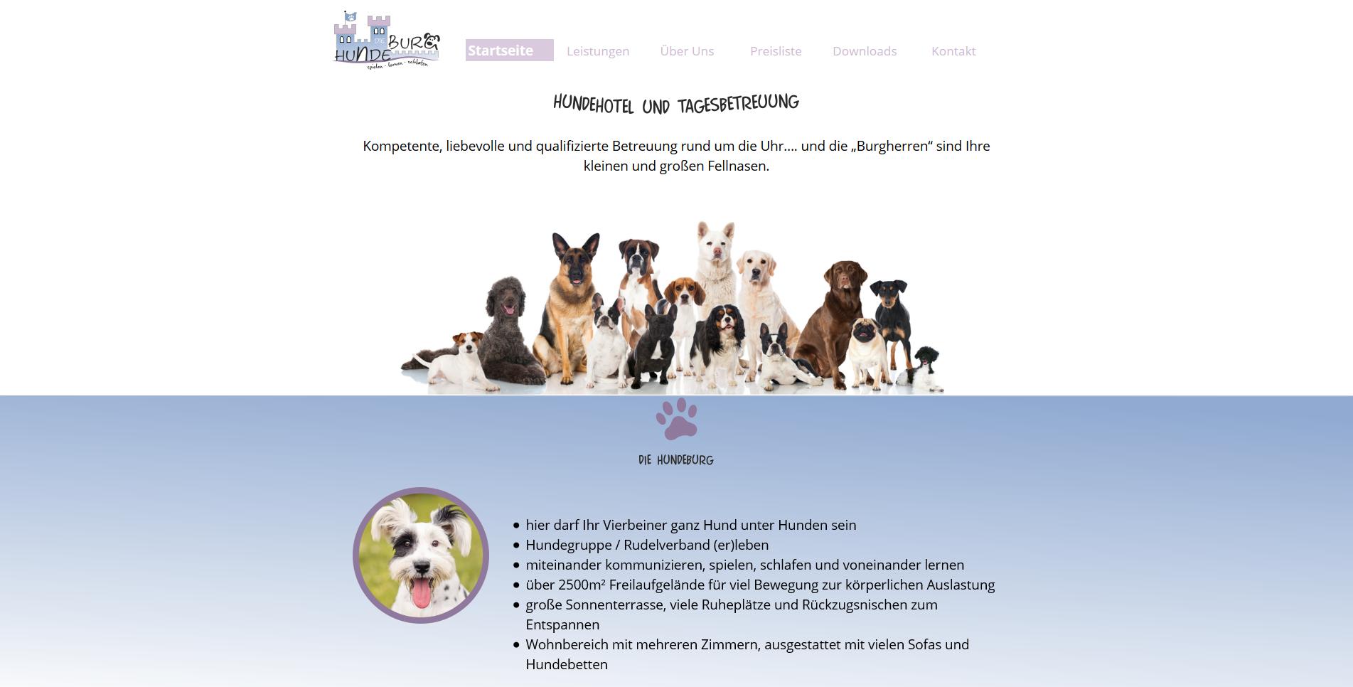 Hundeburg Neidenstein