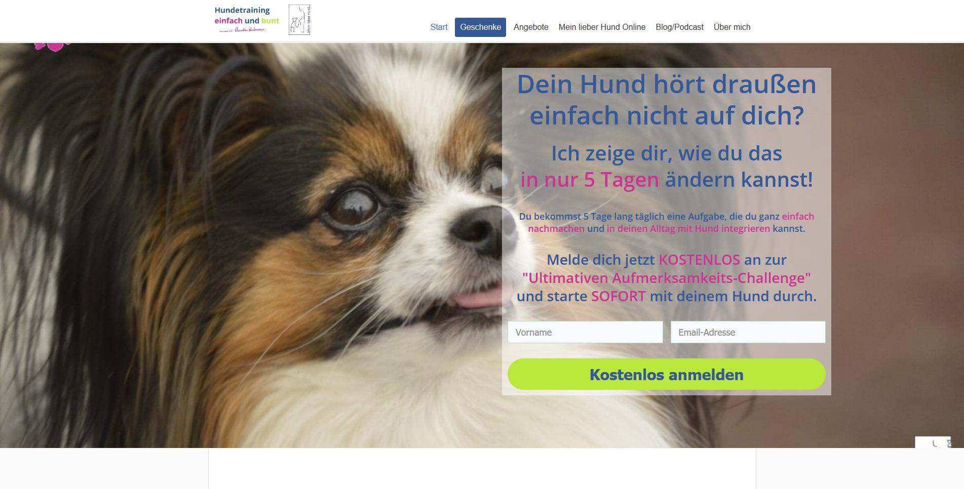 Hundepension Mein lieber Hund