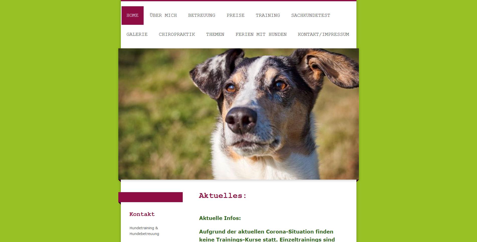 Hundebetreuung Simone Drechsler