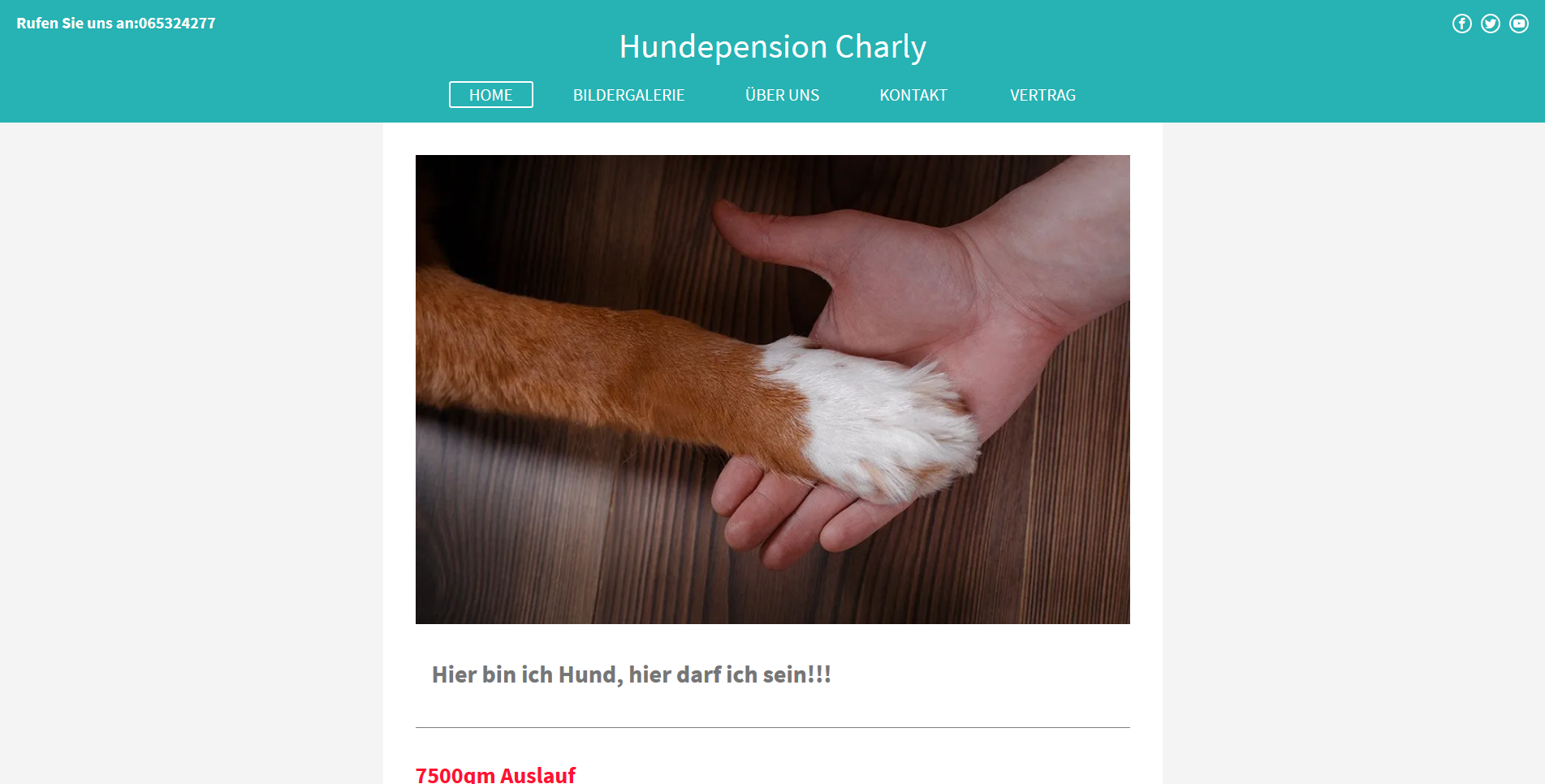 Hundepension Charly