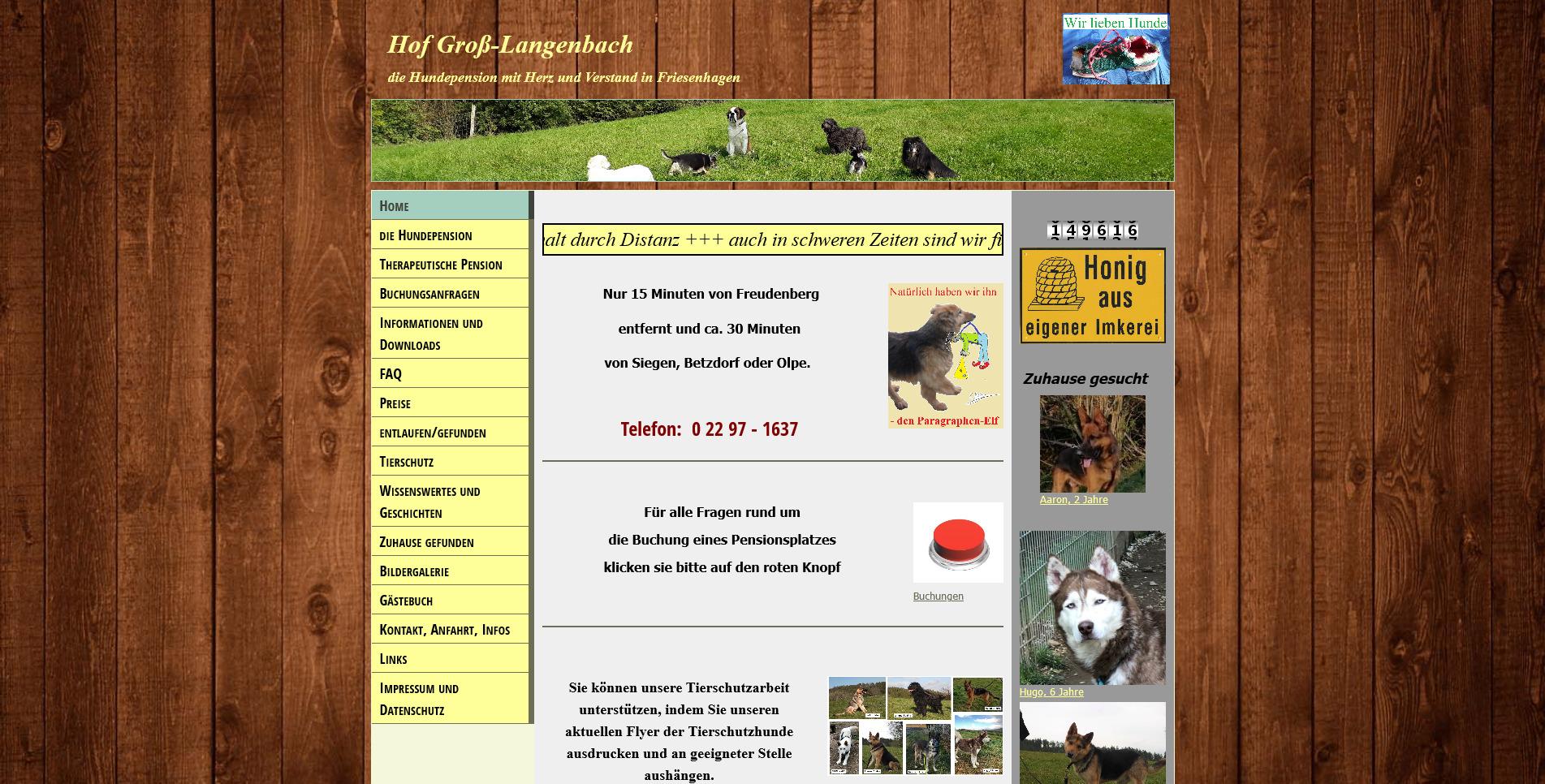 Hundepension Hof Groß-Langenbach