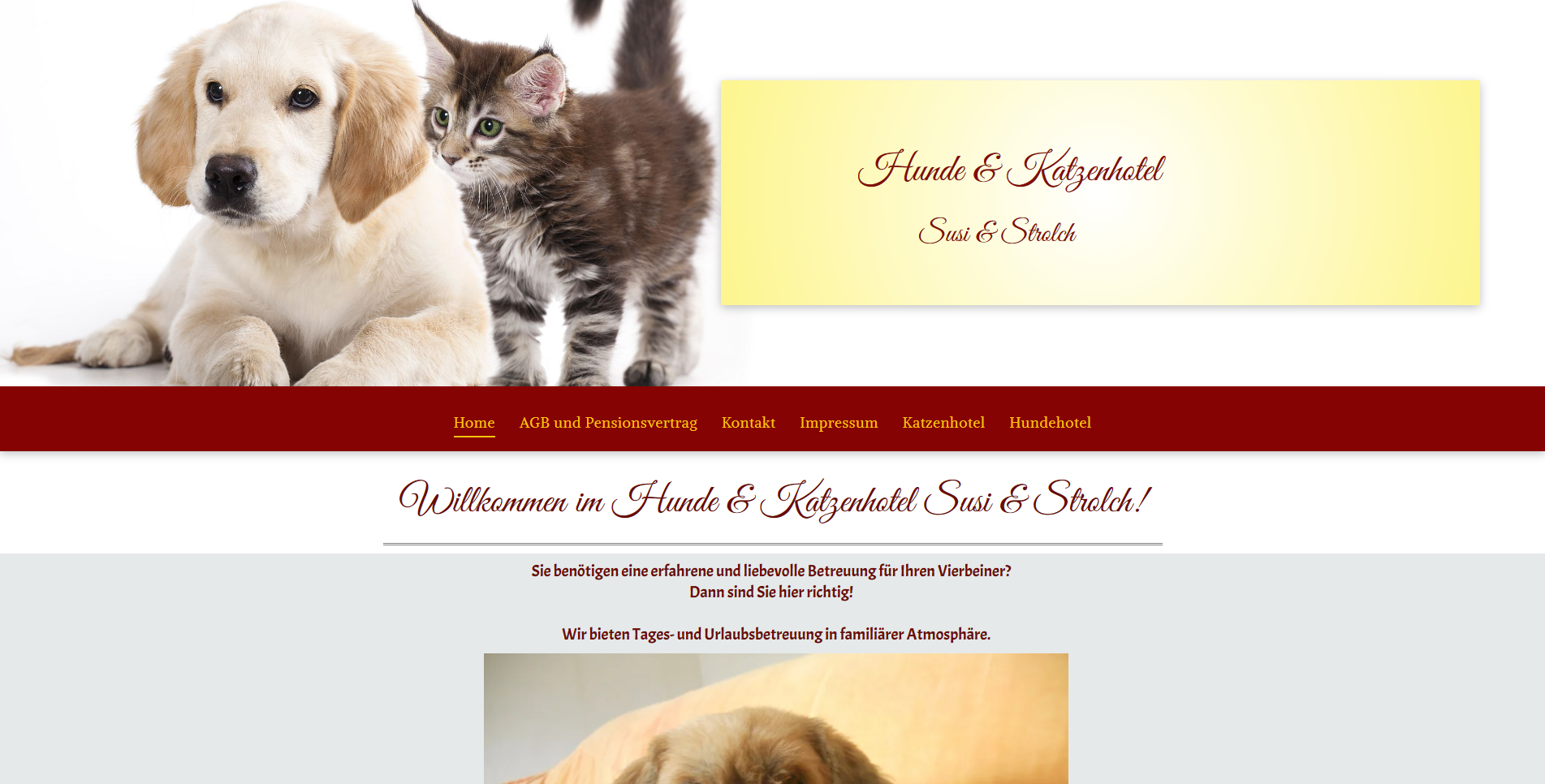 Hunde & Katzenhotel Susi & Strolch