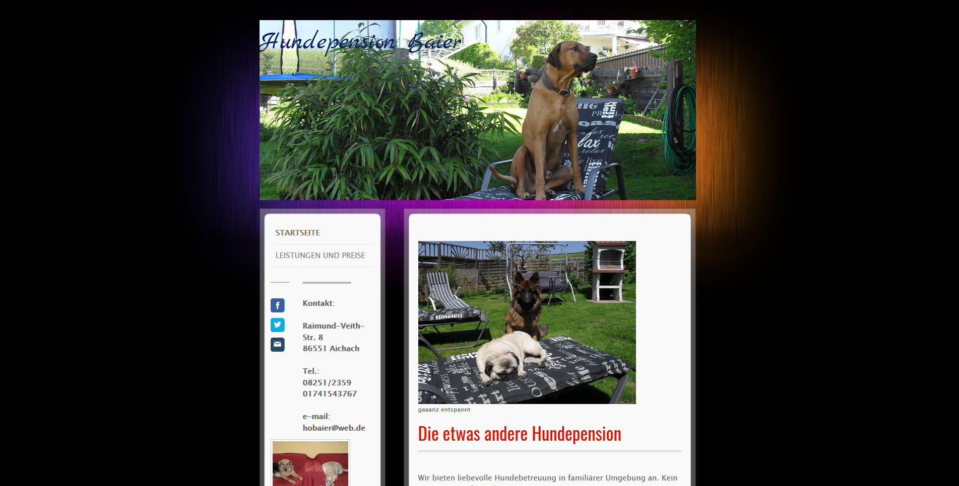 Hundepension Baier