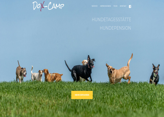 Hundepension Dox-Camp