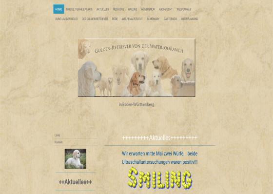 Sandy's Doggydaycare