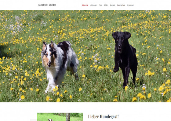 Hundepension Meschede