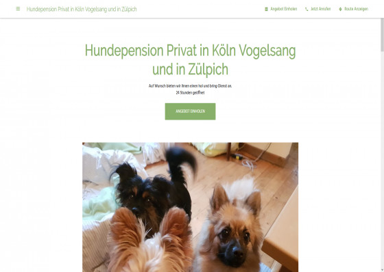 Hundepension in Köln Vogelsang