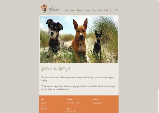 Pfötchenzeit - die Tierbetreuung