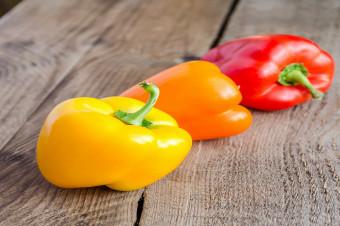 Dürfen Hunde Paprika essen?